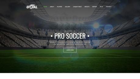 Soccer Website Design - Goal - image