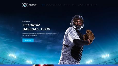 Baseball Website Design - Fieldrun - image