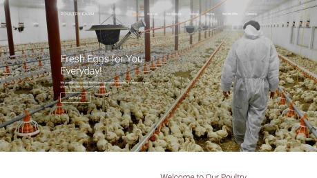 Poultry Farm Web Design - PoultryFarm - image