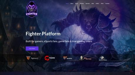 Esports Website Design - Fighter - image