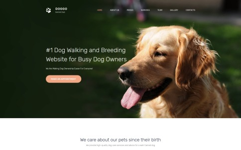 Veterinary Website Design - DOGGO