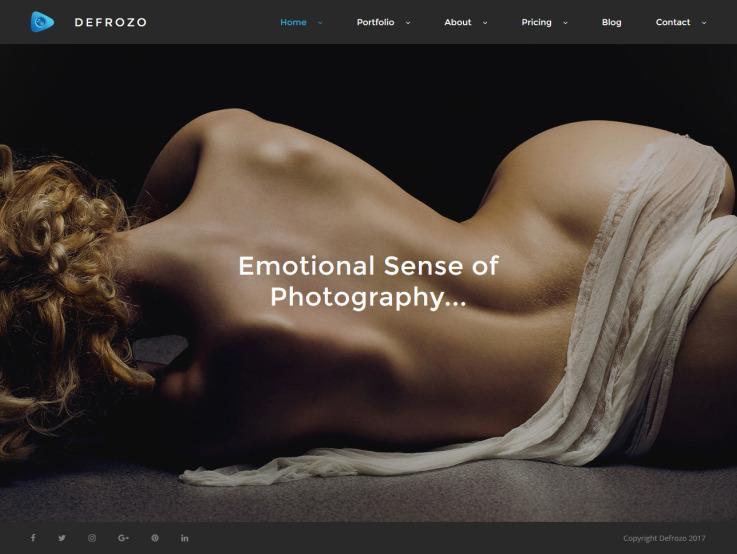 Photography Portfolio Theme - Defrozo - main image