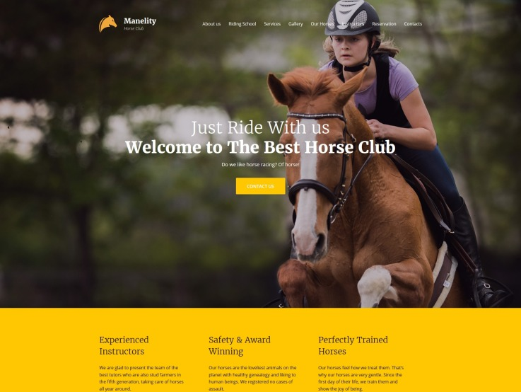 Equine Website Design - Manelity - main image