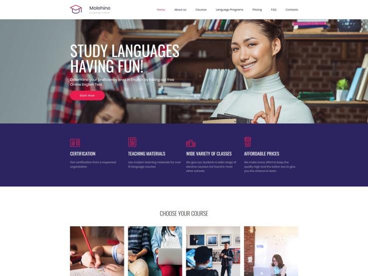 Education Website Design - Molehine - main image