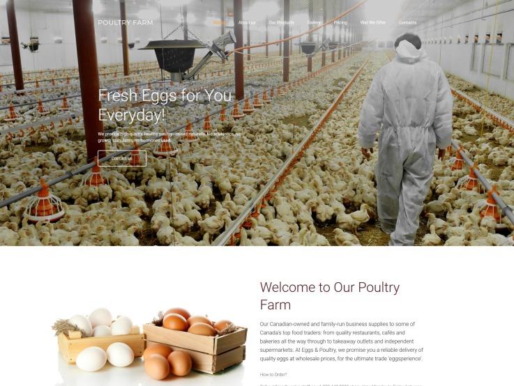 Poultry Farm Web Design - PoultryFarm - main image